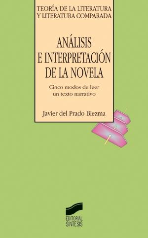Análisis e interpretación de la novela